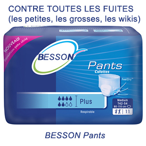 Besson-pants contre les wiki-leaks