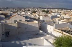 Terrasses de la Médina de Tunis (Crédits Raspail, image libre de droits)