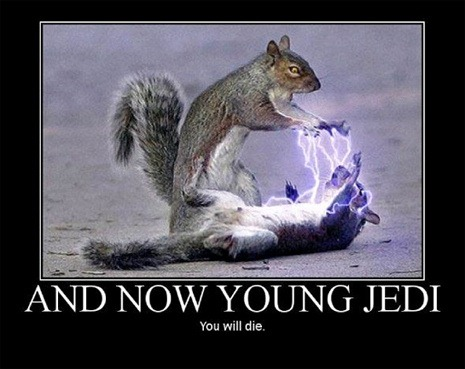 Cinema - And now, young jedi, ...