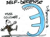 Comment protéger son patrimoine de la crise de l'Euro ?