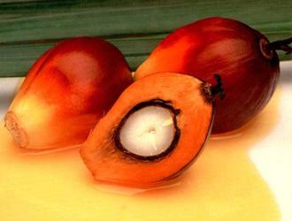 L'huile de palme est-elle victime du protectionnisme français ?