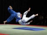 Développement durable, management et Judo!