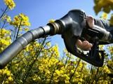 Oups ! Avec les biocarburants, l'Europe a augmenté les émissions de CO2