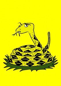 Gadsden flag uh