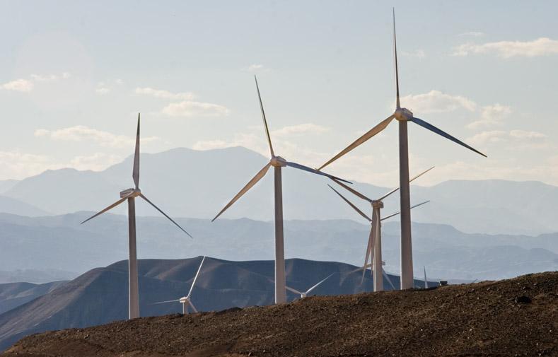 Syndicats et patrons unis contre les énergies renouvelables en Allemagne