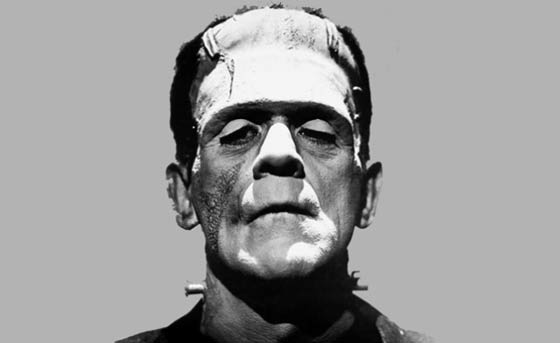 a higlight of lecture notes on frankestein and the gothic The hardcover of the frankenstein: the first two hundred years by christopher horror highlights: and his wry narration feels like a casual lecture from an.