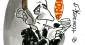 Raymond Aron, une altitude libérale