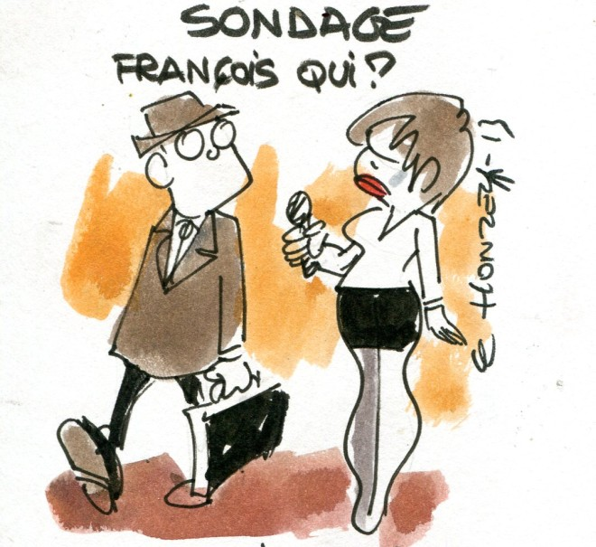 imgscan contrepoints 2013-2373 sondage Hollande