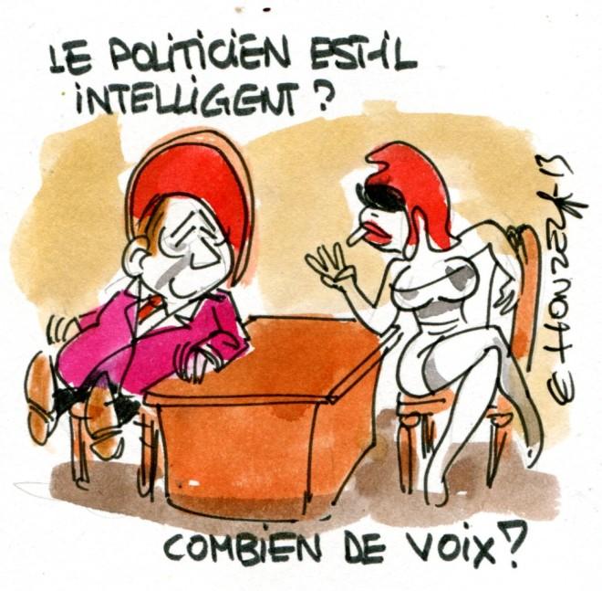 imgscan contrepoints 2013-2413 intelligence des élus