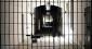 Les sanctions disciplinaires en prison : élargissement du contrôle du juge