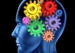 Pourquoi il vaut mieux être curieux qu'intelligent
