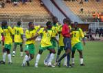Les Lions Indomptables (équipe de football du Cameroun) (Crédits oka_bol, licence Creative Commons)