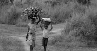 « Libécratie » : liberté et démocratie pour l'Afrique