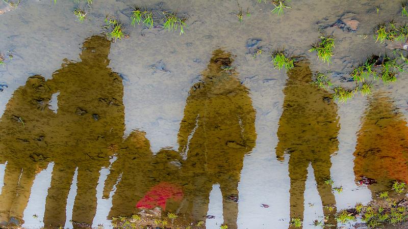 individus miroir CC Hassan Kardous