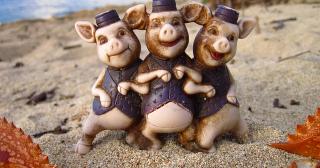 Filière porcine : l'État fait un travail de cochon