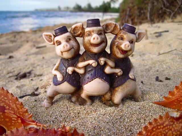 3 petits cochons credits davidd (licence creative commons)