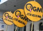 OGM : la recherche publique à la dérive