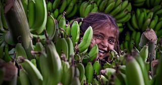 Le capitalisme : simple comme manger une banane en été