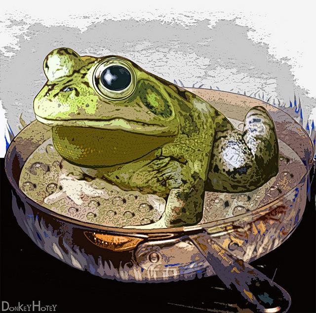 grenouille qu'on fait bouillir credits Donkeyhotey (licence creative commons)
