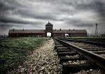 Il y a 70 ans, la libération d'Auschwitz