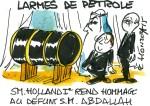 Des larmes de pétrole
