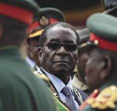 Mugabe credits A birdie (CC BY-NC 2.0)