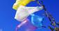 Les sacs de plastique, victimes innocentes des écologistes