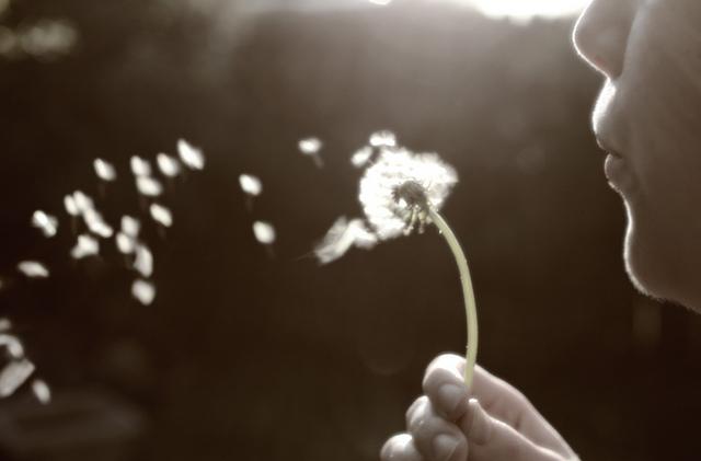 Vent éolien (Crédits : Couse Baker, licence CC BY 2.0), via Flickr.