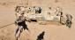 Pourquoi les Étas-Unis doivent renoncer à la guerre terrestre contre l'État Islamique