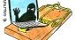 Prolifération et diffusion des solutions de cyberespionnage