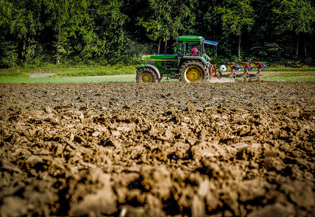 agriculture  matthias ripp(CC BY 2.0)