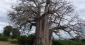 Un périple autour du monde : gentillesse incarnée en Zambie et au Malawi