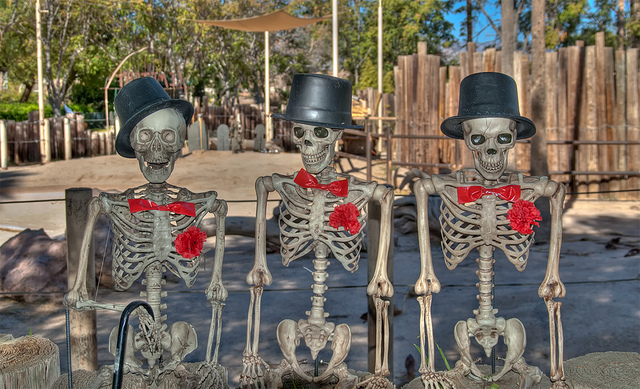 Three halloween skeletons credits Doug Aghassi (CC BY-ND 2.0)