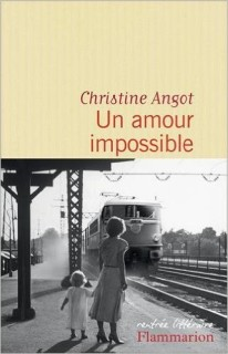 Un amour impossible, un livre de Christine Angot chez Flammarion