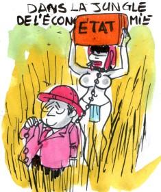 jungle économique rené le honzec