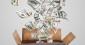 La création monétaire n'a pas permis de relancer la croissance