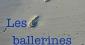 Les Ballerines bleues : un polar épistolaire
