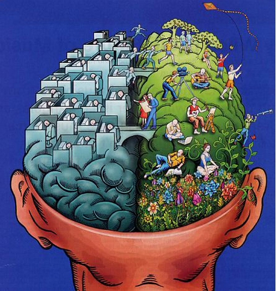 TZA-brain(CC BY-NC 2.0)
