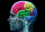 Votre cerveau vous trompe ! le paradoxe de Monty Hall