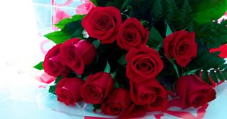 Le prix des roses de la Saint-Valentin