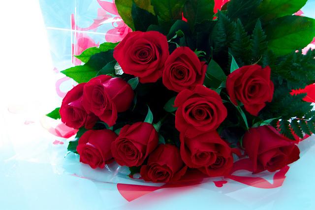 Manel Zaera-roses(CC BY-SA 2.0)