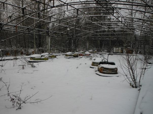 Singe en hiver 4