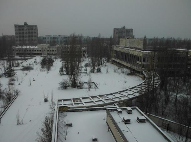 singe en hiver 6