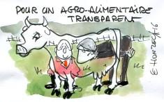 Agro-alimentaire transparent rené le honzec