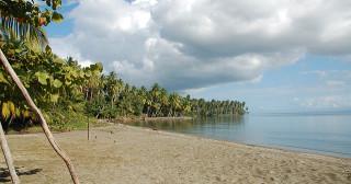 """""""The Island"""" sur M6 : les candidats découvrent l'économie pratique"""