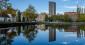 Ma vie d'expat' à Eindhoven aux Pays-Bas