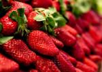2 frères, 2 sortes de fraises, 2 marchés