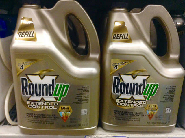 La guerre de Greenpeace contre le glyphosate