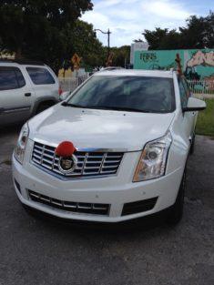 Cadillac déguisée en renne