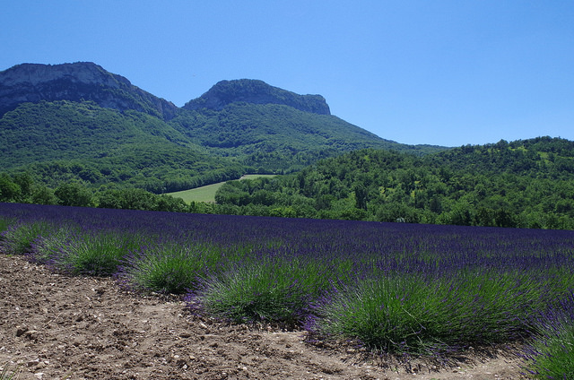 Drôme provençale by Isabelle BarrhuetCC BY-NC-ND 2.0